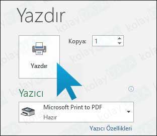 EXCEL Dosyasını PDF Olarak Kayıt Etmek