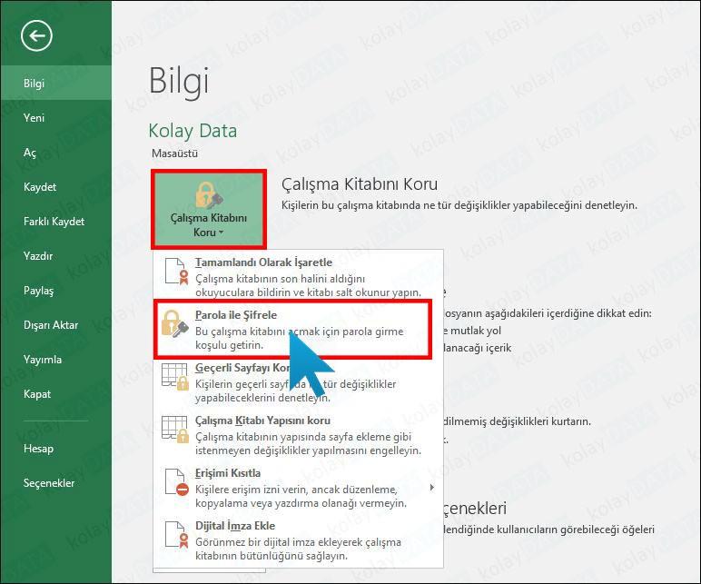 Excel Belgesine Şifre Koyma
