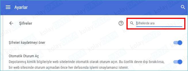Google Chrome'de Kayıtlı Şifreleri Görme