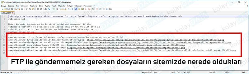 PageSpeed Kullanımı