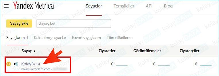 Yandex Metrica Kurulumu