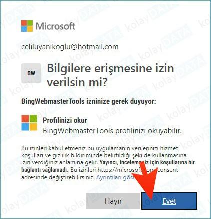 bing site yönetim araçları