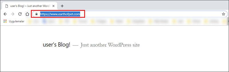 wordpress ücretsiz ssl kurulumu