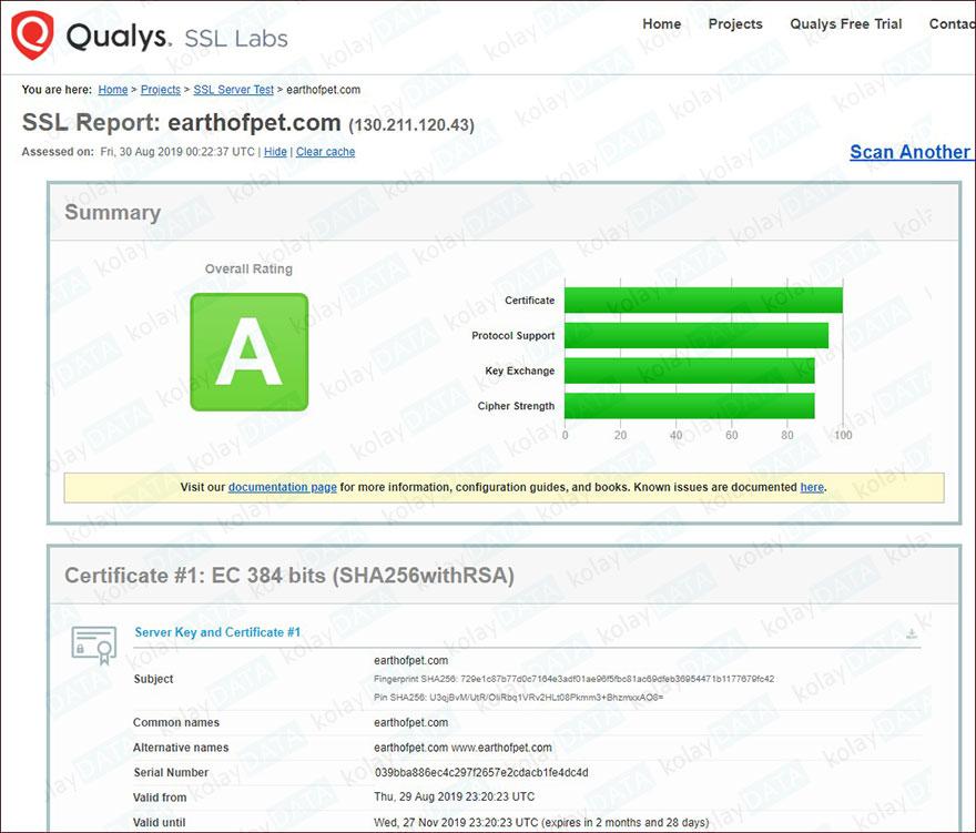 SSL Nedir? SSL Sertifikası Nasıl Test Edilir?